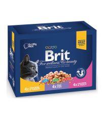 Kapsičky BRIT Premium Cat Family Plate Poultry + Fish 1200 g
