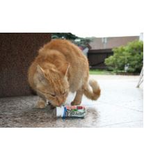 Trixie Roller Pop Lízátko pro kočky s příchutí losos 45 ml