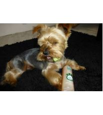 Menfosan Ochranný šampón s norkovým olejom pre psov