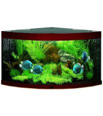Juwel Trigon 350 akvárium set rohový tmavohnedý 123x87x65 cm, objem 350 l