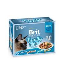 Brit Premium Cat D Fillets in Gravy Family Plate 1020g