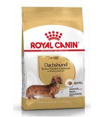 Royal Canin Breed Jazvečík - pre dospelých jazvečíky