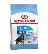 Royal Canin Maxi Junior - pre šteňatá veľkých plemien