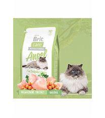 Brit Cat Angel I`m Delighted Senior - kura & ryža pre mačky nad 8 rokov