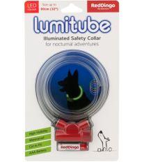 Obojok pre psov svietiace - Red Dingo Lumitube led - červený - 15 - 80 cm