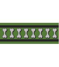 Red Dingo Obojek pol. 25 mm x 41-62 cm - Bones Rfx - Zelená