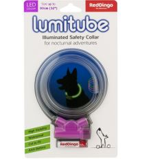 Obojok pre psov svietiace - Red Dingo Lumitube led - fialový - 15 - 80 cm
