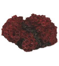 Dekorace AQUA EXCELLENT Mořský korál červený 11 x 9,6 x 5,3 cm