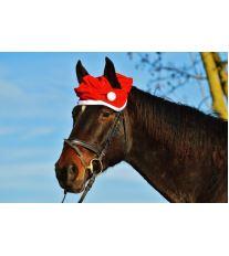 Blíží se Vánoce - i u koní