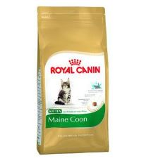 Royal Canin Breed Feline Kitten Maine Coon