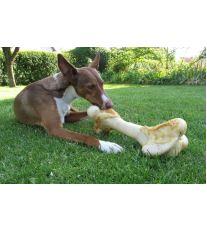 Ako správne vybrať granule pre psov?