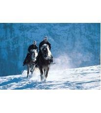 Zima s koňem
