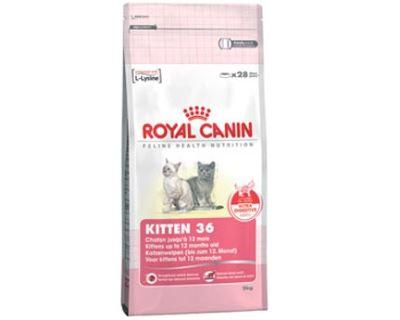 Royal Canin Feline Kitten - pre mačiatka od 4. mesiacov 400 g