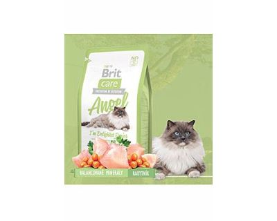 Brit Cat Angel I`m Delighted Senior - kura & ryža pre mačky nad 8 rokov 2 kg