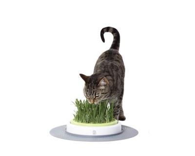 Hagen Cat It Design Senses trávnik