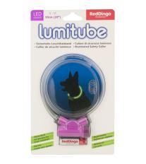 Obojok pre psov svietiace - Red Dingo Lumitube led - fialový - 15 - 50 cm