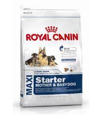 Royal canin Kom. Maxi Starter