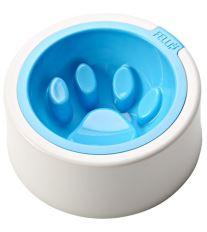 Fellipet Kaleido Good Manners miska proti hltaniu pre malé a stredné psy - Aqua 355 ml