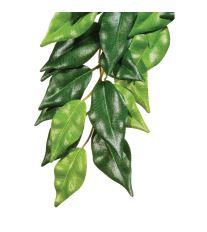 Rastlina EXO TERRA Ficus