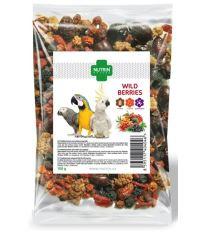Nutrin Nature snack Wild Beries - papoušek 100g